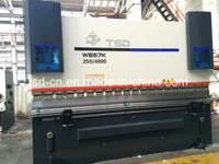 250t Small Bending CNC Press Brake (WE67K-250/4000)